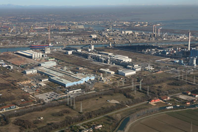 fusina_plant_large