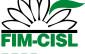 Logo FIM+social H